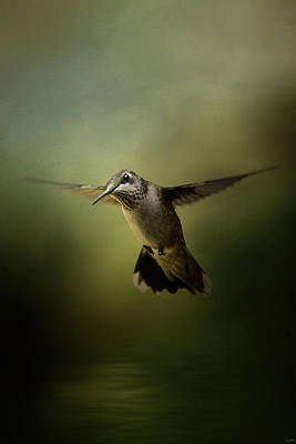 Hummingbird Over Water Print by Jai Johnson