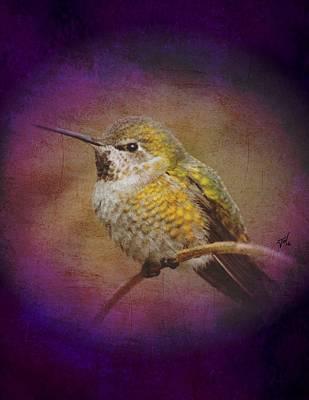 Art Print featuring the digital art Hummingbird Rufous by John Wills