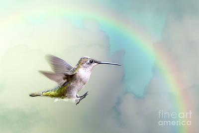 Photograph - Hummingbird Under Rainbow by Bonnie Barry