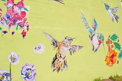 Photograph - Hummingbird Wall by Karen Silvestri