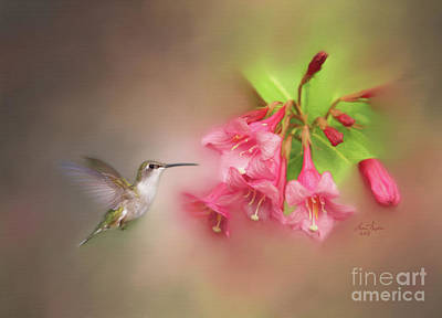 Digital Art - Hummingbird With Flowers by Lena Auxier