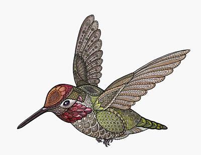 Drawing - Hummingbird by ZH Field