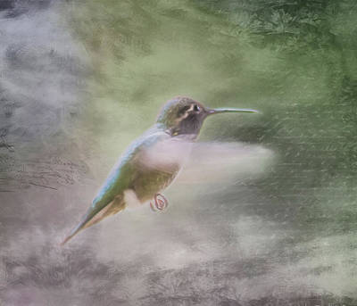 Photograph - Hummingbird In Flight - Textured by Marilyn Wilson