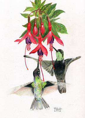 Painting - Hummingbirds And Fuchsia by Penrith Goff