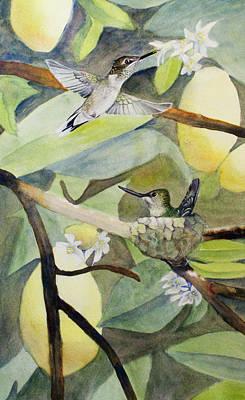 Hummingbirds And Lemons Art Print