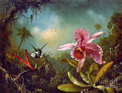 Photograph - Hummingbirds And Orchid 1871 by Padre Art
