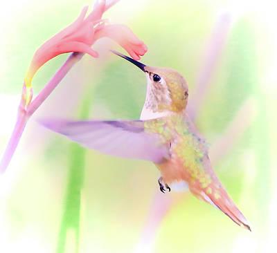 Photograph - Hummingbird's Nectar by Athena Mckinzie