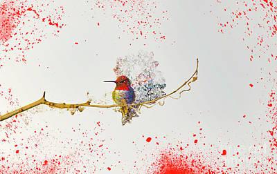 Photograph - Hummingbirds by Roman Gomez
