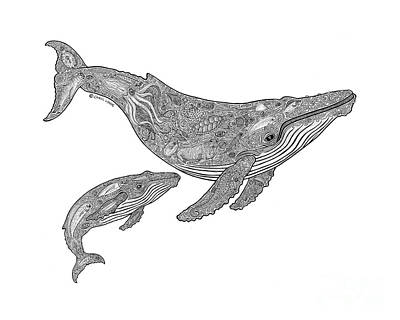 Humpback Whale Drawing - Humpback And Calf by Carol Lynne
