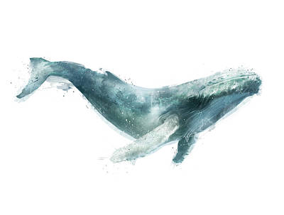 Humpback Whale Painting - Humpback Whale From Whales Chart by Amy Hamilton
