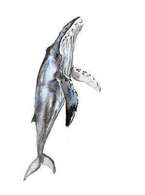 Humpback Whale Painting - Humpback Whale by Suren Nersisyan