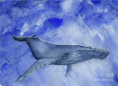 Painting - Humpback Yearling Under Our Boat by Randy Sprout