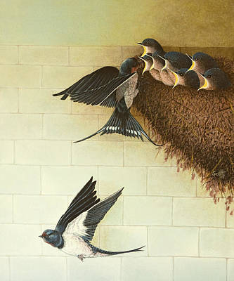 Sparrow Painting - Hungry Mouths by Pat Scott