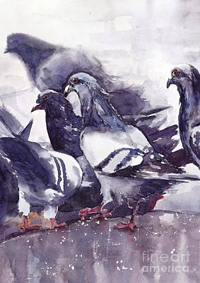 Pigeon Wall Art - Painting - Hungry Pigeons Watercolor by Suzann's Art