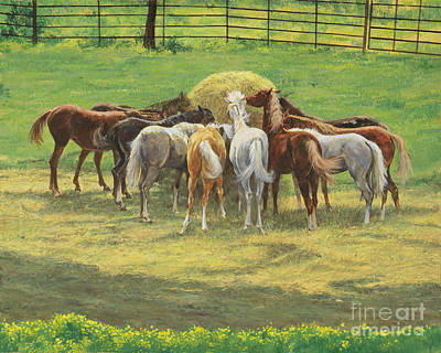 Hay Rides Painting - Hungry Yearlings At Big Creek by Don Langeneckert