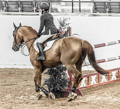 Canter Photograph - Hunter Classic by Betsy Knapp