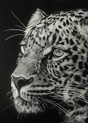 Olivia Drawing - Hunter's Gaze by Olivia Thompson