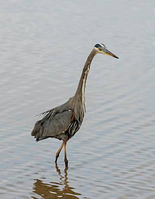 Photograph - Hunting And Fishing by Loree Johnson
