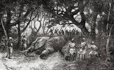 African Animals Drawing - Hunting Elephants In Central Africa In by Vintage Design Pics
