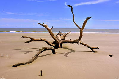 Photograph - Hunting Island Beach Beaufort Sc by Lisa Wooten