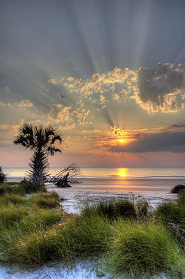 Scenes Digital Art - Hunting Island Sc Sunrise Palm by Dustin K Ryan