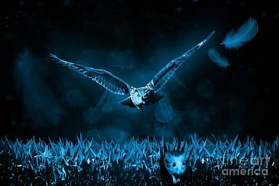 Hunting Owl .  Original
