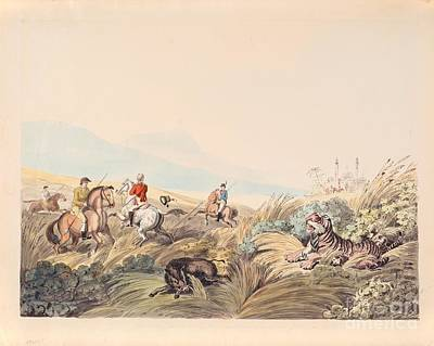 Hunting Scene With Tiger And Boar Art Print by MotionAge Designs