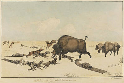 Drawing - Hunting The Bison by Peter Rindisbacher