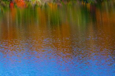 Photograph - Huntington Autumn Reflection by Polly Castor