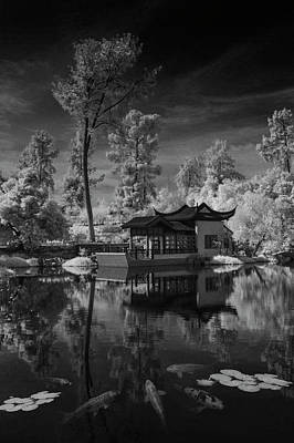 Photograph - Huntington Chinese Botanical Garden In California With Koi Fish In Black And White Infrared by Randall Nyhof