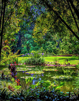 Photograph - Huntington Gardens by Endre Balogh