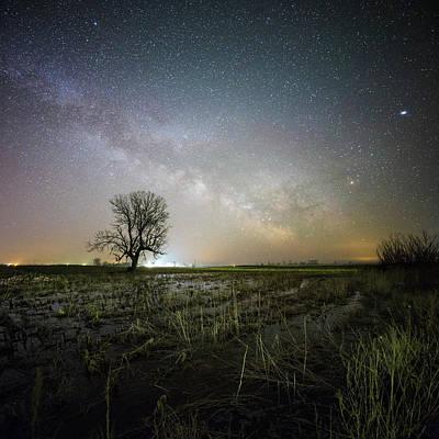 Saturn Photograph - Huron Tree  by Aaron J Groen