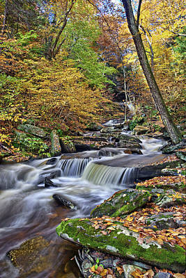 Water Fall Photograph - Huron Waterfall by Marcia Colelli
