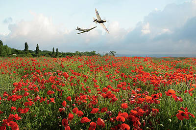 Photograph - Hurricane And Spitfire Over Poppy Field by Gary Eason