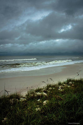 Photograph - Hurricane Hermine Mexico Beach 2 by Debra Forand