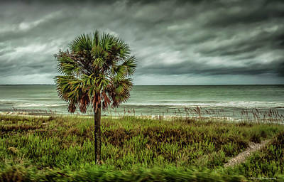 Photograph - Hurricane Hermine Mexico Beach 4 by Debra Forand