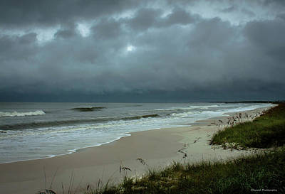 Photograph - Hurricane Hermine Mexico Beach by Debra Forand