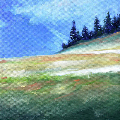 Painting - Hurricane Ridge by Nancy Merkle