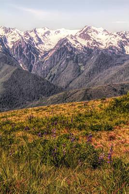 Mount Rushmore Mixed Media - Hurricane Ridge Olympic National Park by Dan Sproul