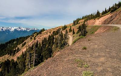 Photograph - Hurricane Ridge Road by Dan Sproul