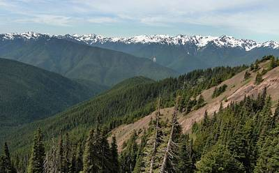 Photograph - Hurricane Ridge View by Dan Sproul