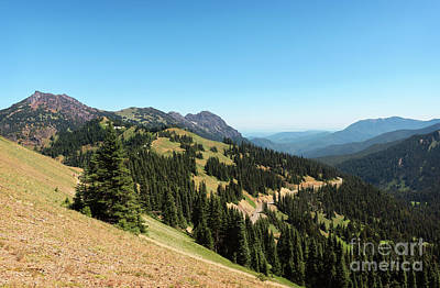 Photograph - Hurricane Ridge View II by Sharon Seaward