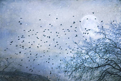Flock Of Bird Photograph - Hurry Home by Theresa Tahara
