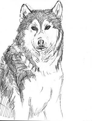 Husky Art Print by Charme Curtin