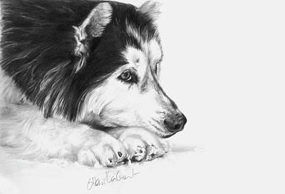 Husky Contemplation Print by Sheona Hamilton-Grant