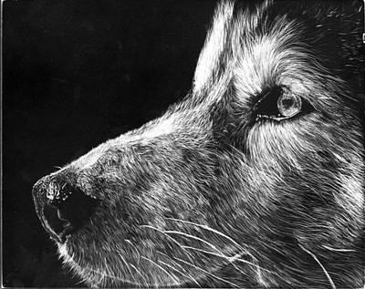 Husky Original by Dallas Rowlands