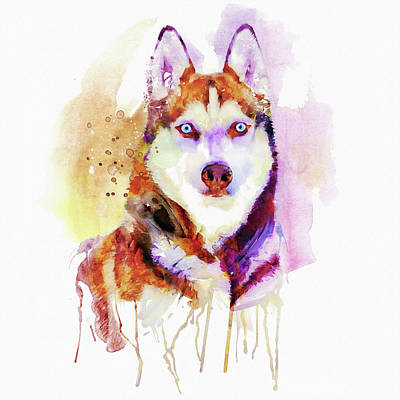 Watercolor Pet Portraits Painting - Husky Dog Watercolor Portrait by Marian Voicu