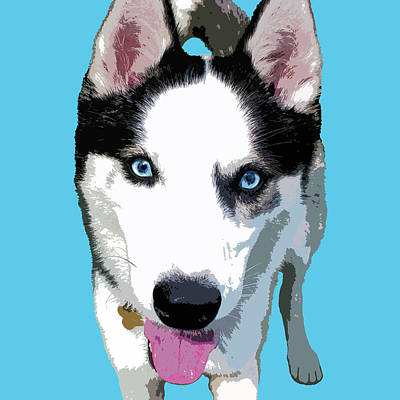 Digital Art - Husky by Mary Castellan
