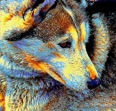 Digital Art - Husky Up Close by Bill And Deb Hayes