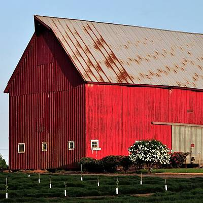 Jerry Sodorff Royalty-Free and Rights-Managed Images - Hwy 47 Red Barn 21x21 by Jerry Sodorff